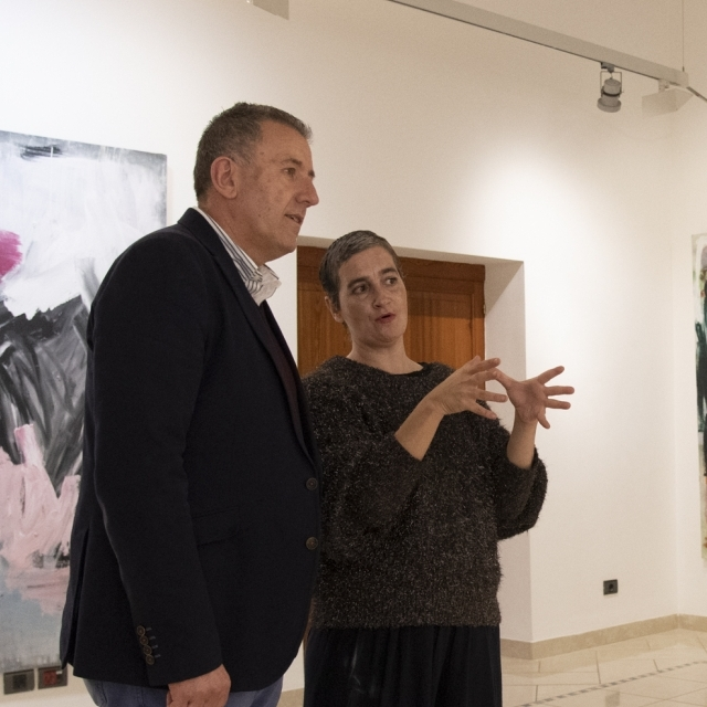 Diputació acull l'exposició 'Canvas' de l'artista Rebeca Plana