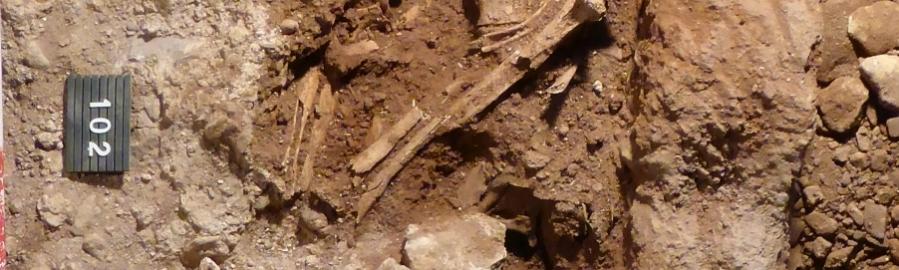 Diputación participa en el mayor estudio genético sobre la antigüedad